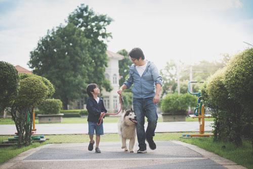 家族で仲良く愛犬とお散歩日和