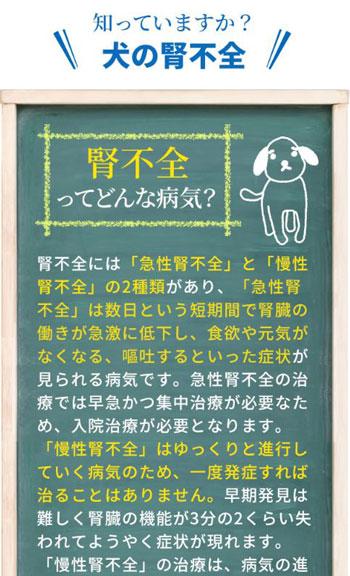 犬用サプリメント毎日腎活のまとめ